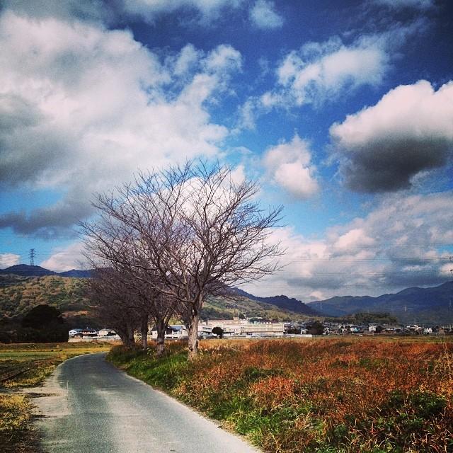今日も暖かい #イマソラ #空 #雲 #like