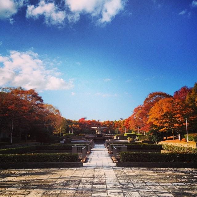#イマソラ #空 #雲 #like #紅葉 #公園 #sky