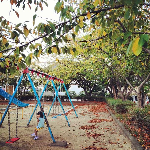 秋の兆し #公園 #緑 #落葉 #like