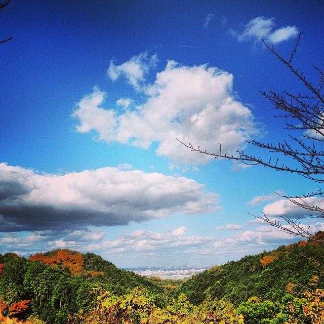 #イマソラ #空 #雲 #like #sky #green #紅葉