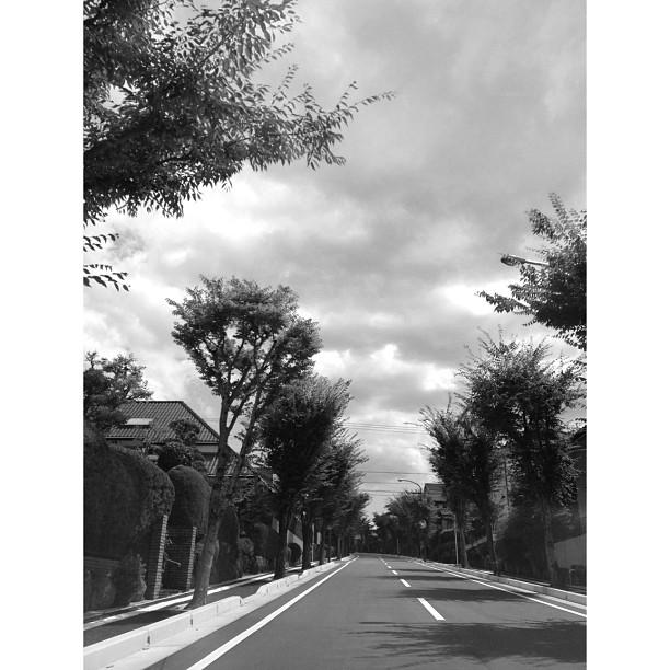 意味無いと思っていた行動が驚くべき結果に。嬉しい事ではある。#道 #イマソラ #空 #雲