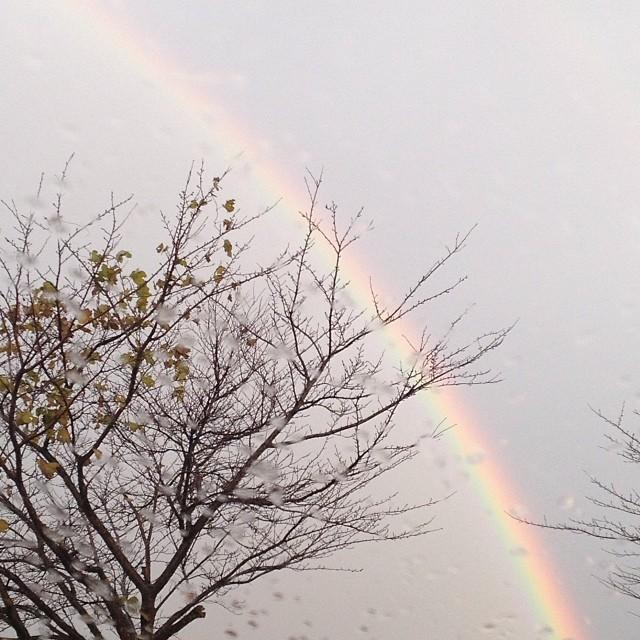 今朝の #虹 #sky #rainbow #like
